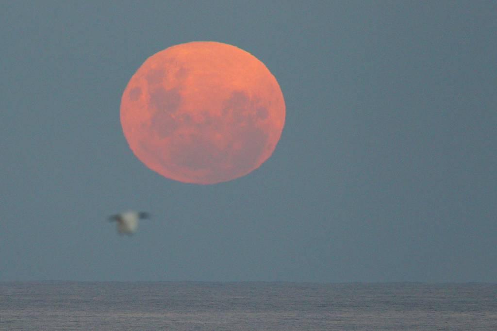 Inizia il 12 luglio l'estate delle super-lune
