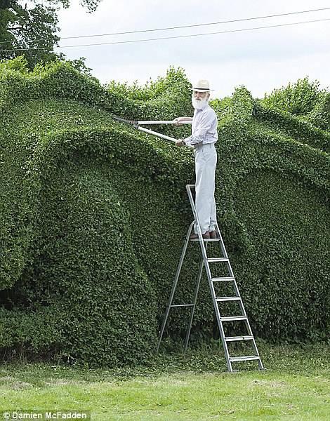 Giardiniere-Artista dopo 10 anni conclude la sua opera. E fa il giro del mondo – FOTO