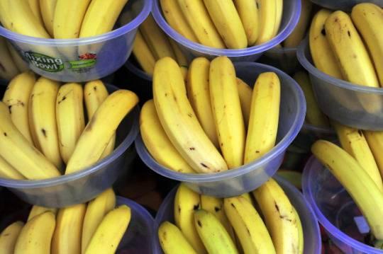 Gioia Tauro: 100 kg di cocaina nascosti tra le banane