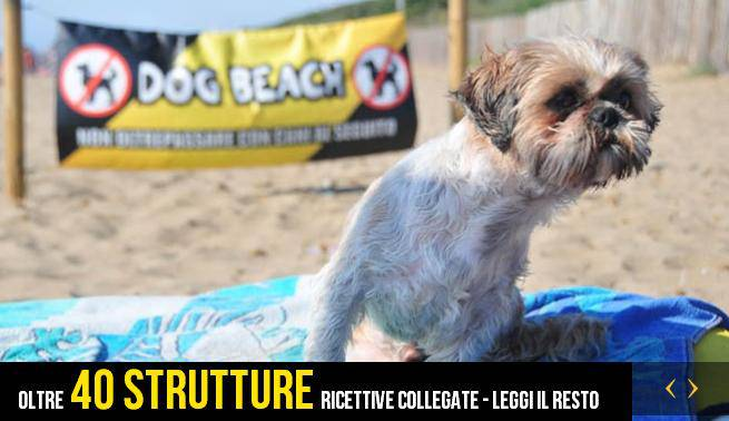 Spiagge per cani: Toscana al primo posto