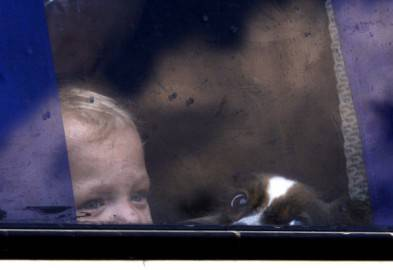 Un bambino e il suo cane su un autobus fermo ad un posto di blocco tra Kramatorsk e Sloaviansk (ANATOLII STEPANOV/AFP/Getty Images)