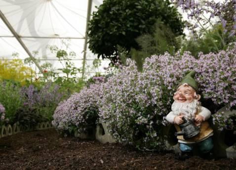 Nano da giardino (Dan Kitwood/Getty Images)