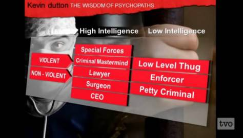 Kevin Dutton on The Wisdom of Psychopaths (screen shot youtube)