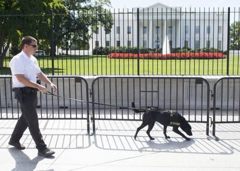Sicurezza rafforzata davanti alla Casa Bianca (SAUL LOEB/AFP/Getty Images)