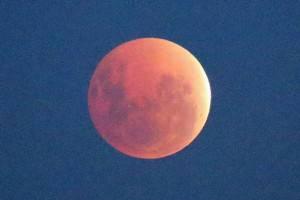 Eclissi lunare totale del 15 aprile 2014 (Scott Barbour/Getty Images)