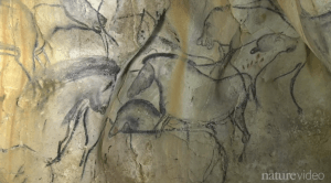Pitture rupestri (Screenshot  Youtube)