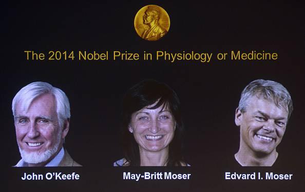 Nobel Medicina 2014 a O'Keefe, May-Britt e Moser per scoperte sul cervello