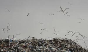 Discarica (MARIO LAPORTA/AFP/Getty Images)