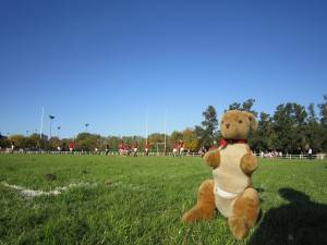 Campo Rugby (foto Pixabay)