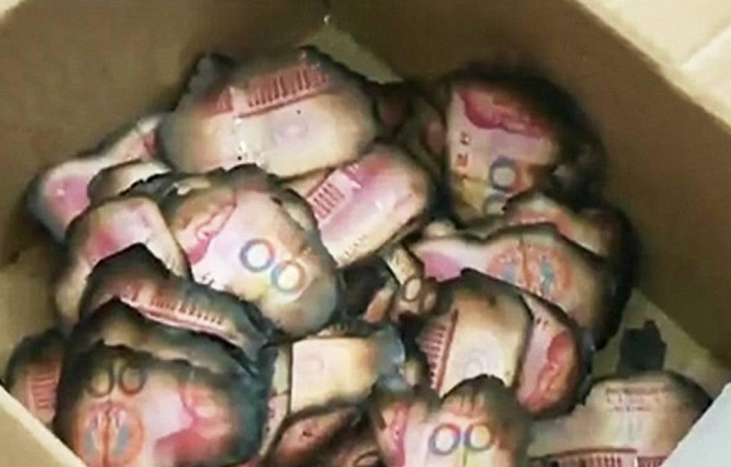Donna brucia accidentalmente 40 mila euro nella stufa - Stufa elettrica che consuma poco ...