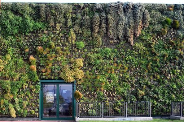 I giardini di Rozzano (OLIVIER MORIN/AFP/GettyImages)