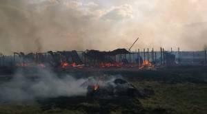 Ucraina Canile Incendio