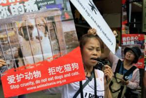 Cina Cani Animalisti