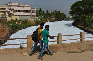 Indian pedestrians cover their noses as they cross a bridge over a frothing canal, which once carried water from Bellandur Lake to Varthur Lake, in east Bangalore on May 1, 2015. The innocuous-looking foam, which from a distance, looks like snow is nothing but toxic effluent caused by the polluted sewage water overflowing from nearby Bellandur Lake. The foam is a result of the water in the lake having high content of ammonia and phosphate and very low dissolved oxygen. Sewage from many parts of the Bangalore is released into lakes, leaving it extremely polluted. The foam during heavy rains spill onto the road, causing a traffic pile besides spreading unbearable stench in the air in the neighbourhood. AFP PHOTO/Manjunath KIRAN        (Photo credit should read MANJUNATH KIRAN/AFP/Getty Images)