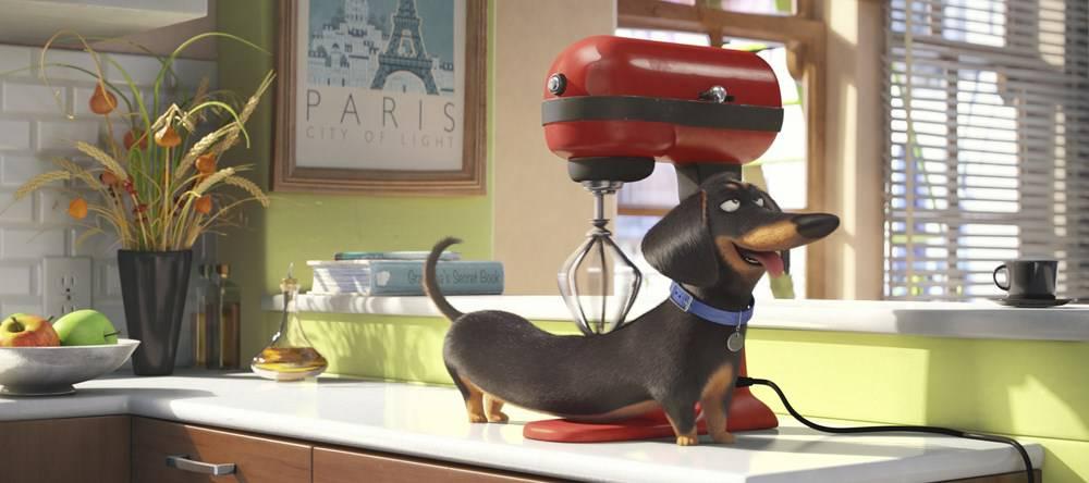 """""""Pets – Vita da animali"""": ecco la verità sui nostri amici domestici!"""