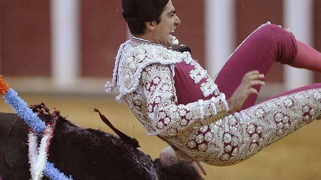 Nuova tragedia alla corrida: il toro si ribella, torero infilzato perde un testicolo –VIDEO