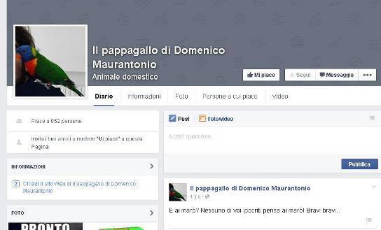 Morte Domenico, macabra ironia su Facebook
