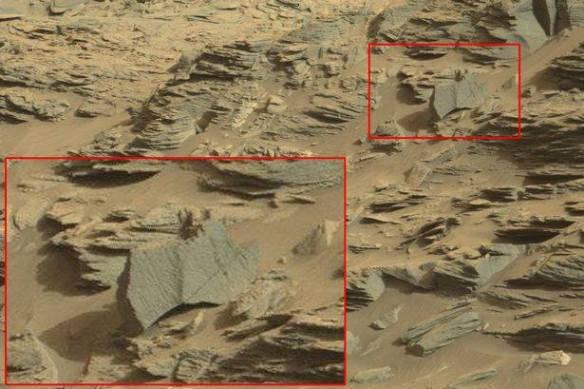 Forme di vita su Marte (foto Nasa/Ufo Sightings Daily)