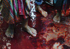 Butchers stand on a bloodied sidewalk near cattle that was slaughtered and the animals quartered in a neighborhood of Dhaka on September 25, 2015. Muslims across the world celebrate the annual festival of Eid al-Adha, or the Festival of Sacrifice, which marks the end of the Hajj pilgrimage to Mecca and in commemoration of Prophet Abraham's readiness to sacrifice his son to show obedience to God. AFP PHOTO / ROBERTO SCHMIDT (Photo credit should read ROBERTO SCHMIDT/AFP/Getty Images)