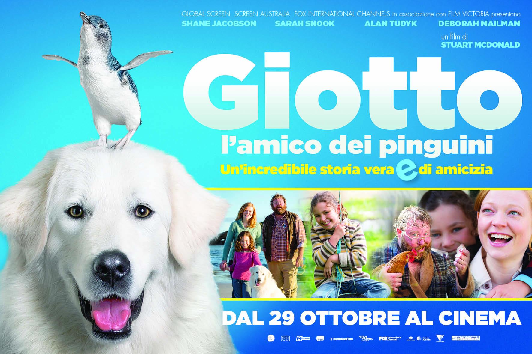 """""""Giotto, l'amico dei pinguini"""": un'emozionante storia vera"""
