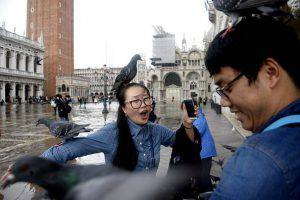 Tourists pose with pigeons in the flooded St. Mark's Square in Venice, on November 7, 2014. The high water, a combination of high tides and a strong Scirocco wind in the Adriatic Sea, stood at 110 centimeters early on November 7. The city has for years been wrestling with the problems posed by the threat of rising sea levels. AFP PHOTO / OLIVIER MORIN (Photo credit should read OLIVIER MORIN/AFP/Getty Images)