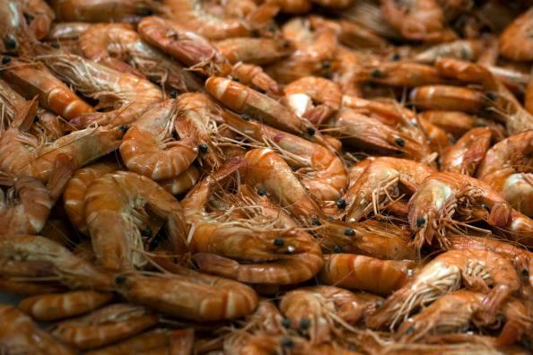 Allerta alimentare    (Photo credit should read JOEL SAGET/AFP/Getty Images)