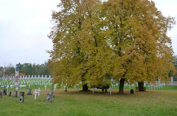 Il cimitero di Milovice (pubblico dominio)