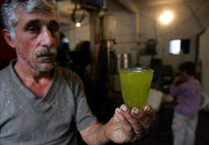 Imatin, : Palestinian Fathi Suwan inspects a glass of fresh olive oil at the olive press he operates for local farmers in the Palestinian village of Imatin in the West Bank 14 November 2006. Several hundred Israeli volunteers are helping Palestinians all over the West Bank to harvest their olives at the height of the season, in the belief that their presence deters the worst excesses of radical violence from militant right-wing settlers. Right-wing settlers have cut down and burnt groves, attacked farmers and stolen olives in recent years. AFP PHOTO/MENAHEM KAHANA . (Photo credit should read MENAHEM KAHANA/AFP/Getty Images)