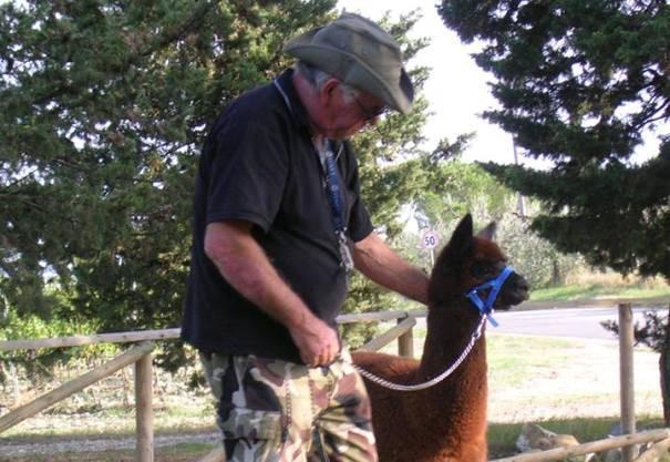 Tiezzi con un'alpaca (foto Facebook)