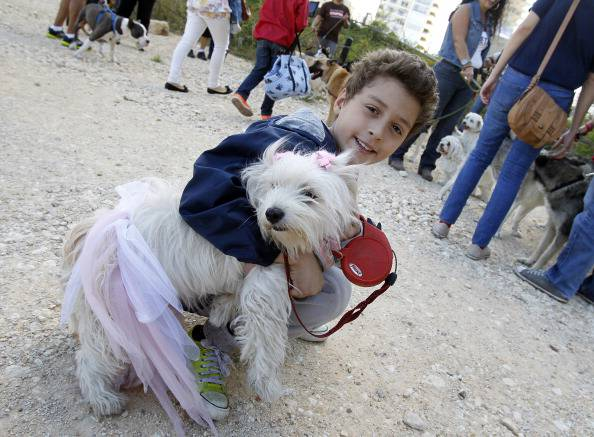 Un bambino col suo cane (ANWAR AMRO/AFP/Getty Images)