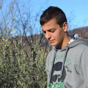 Daniel Marinelli (web)