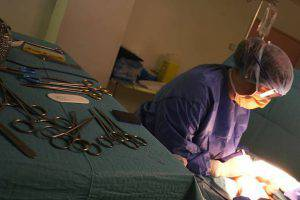 """Scoperto falso medico: """"curava"""" malati di tumore coi funghi"""