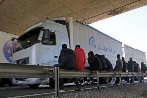 Camion maiale islamici
