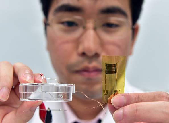 Si rischia una nuova pandemia (Photo credit should read YOSHIKAZU TSUNO/AFP/Getty Images)