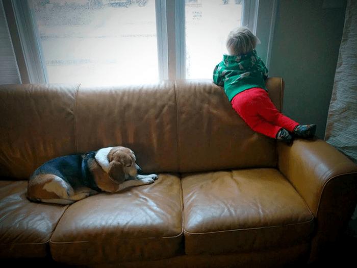 Luke ed il cane  Moe fonte wonder.giunti