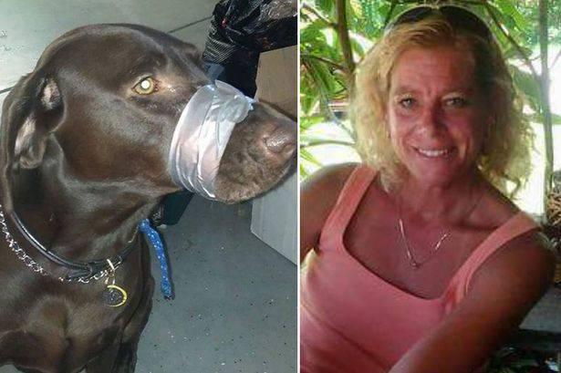 Lega il muso del suo cane: rischia 5 mesi di carcere