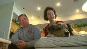"""Ritrovano il cane dopo sei anni: """"E'il nostro regalo più bello"""" (Video)"""