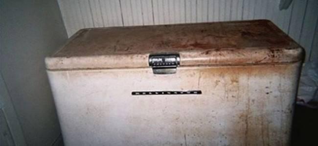 Il congelatore dove sono stati rinvenuti i bambini fonte websource