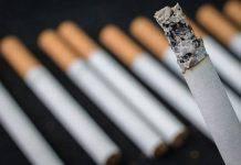 Fumo sigarette risultati ricerca