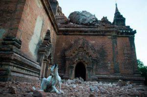 Bagan dopo il sisma (Getty Images)
