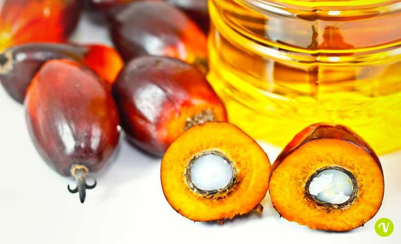La scelta controcorrente di Ferrero: sì olio di palma certificato