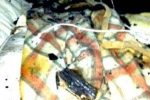 La coperta elettrica che ha preso fuoco (Websource)