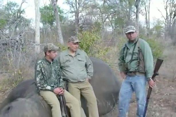 L'elefante ferito si ribella: fine orribile per il cacciatore – VIDEO
