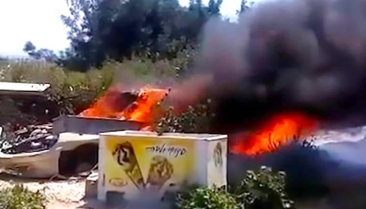 Cani bruciati vivi in un'auto: ecco il video choc