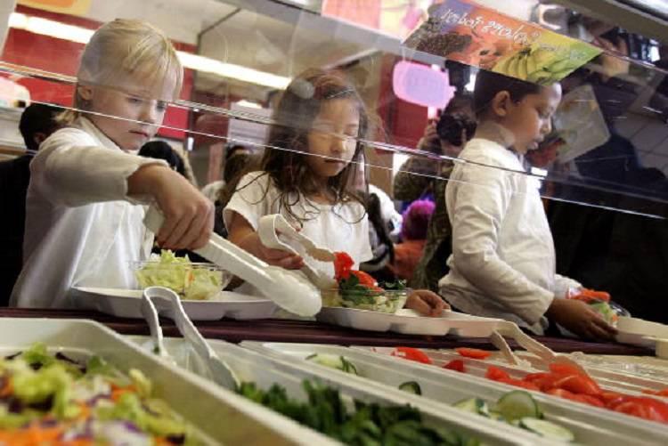 Bimbi intossicati a scuola: escrementi nel cibo della mensa
