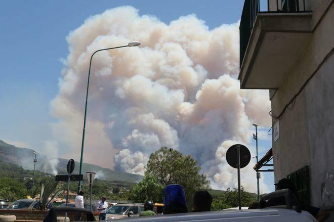Vesuvio, gatti cosparsi di benzina per dare fuoco