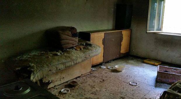 Disabile minorenne trovata in casa nuda e tra gli escrementi nel napoletano