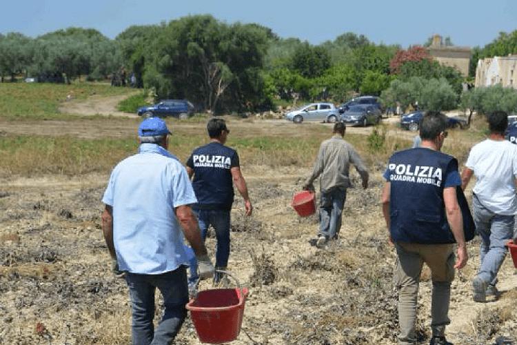 Un malore nei campi: la contadina muore a 39 anni