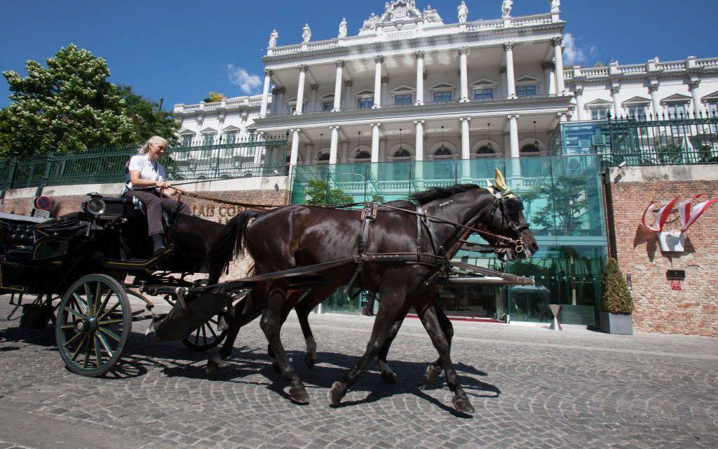 Codice stradale, novità in arrivo: addio ai cavalli, strisce rosa non solo