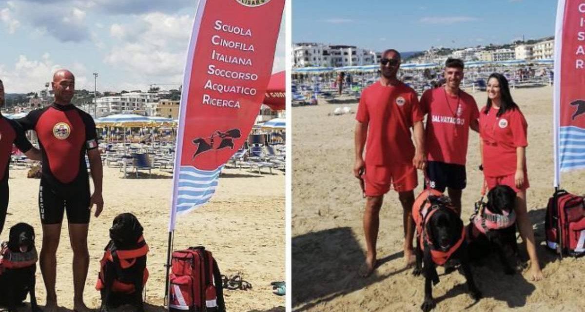 Vieste, due ragazzi rischiano l'annegamento: salvati da bagnini e cani